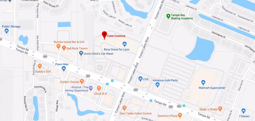 Casa Cosenza 3705 Tampa Rd #6, Oldsmar, FL 34677